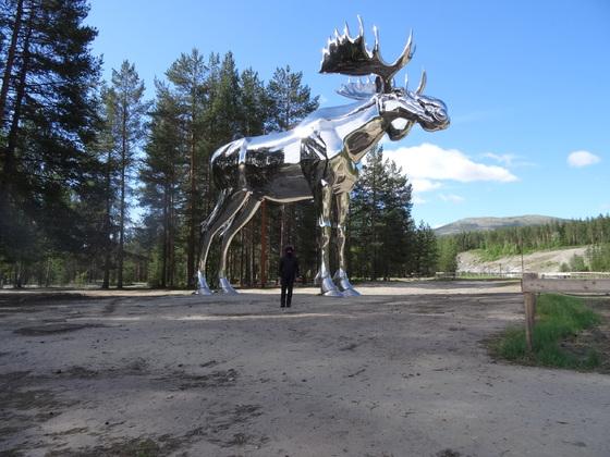 Neulich in Norwegen, ich habe da einen Elch gesehen....