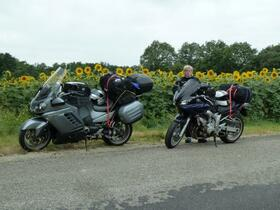 Pause a.d. Weg zum Mittelmeer an einem riesigen Feld Sonnenblume