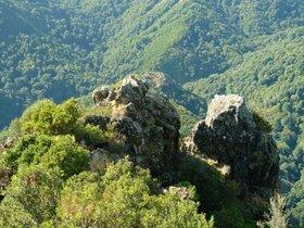 GGroße Waldfflächen auf Korsika